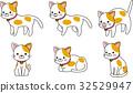 猫 猫咪 小猫 32529947