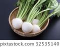 순무, 야채, 채소 32535140