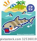 鯊魚 海 大海 32536019