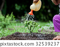little girl watering young tree with watering pot 32539237