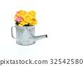 rose, roses, carnation 32542580