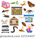 Pet insects appliance icon set flat isolated  32554407