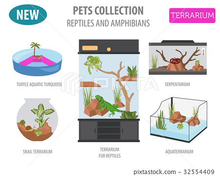Pet reptiles appliance icon set flat style  32554409
