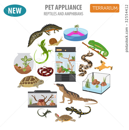 Pet reptiles appliance icon set flat style  32554412
