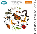 Pet insects breeds icon set flat style isolated  32554415