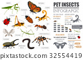 Pet insects breeds icon set flat style isolated  32554419