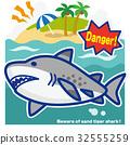 鯊魚 海 大海 32555259
