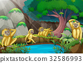 Four gibbons in the forest 32586993