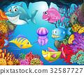 动物 鱼 海 32587727