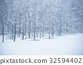 ฤดูหนาว,หิมะ,แหล่งน้ำ 32594402