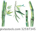 Watercolor bamboo illustration 32597345