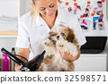 Vet with his dog Shih Tzu 32598571