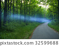 Blue smoke spreads over the road in the woods 32599688