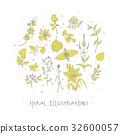 Floral botanical illustration 32600057