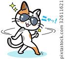 猫 猫咪 小猫 32611621