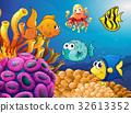 鱼 水下 海洋 32613352