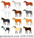 animal, animals, horse 32613592