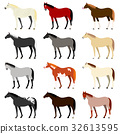 animal, animals, horse 32613595