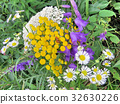 Thornhill the wildflowers July 2017 32630226