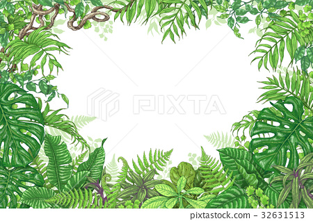 Tropical Plants Rectangle Frame 32631513