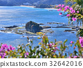 해안, 바다, 꽃 32642016