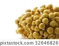 버섯, 음식, 먹거리 32646826