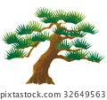 japanese, style, pine 32649563