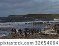 beach bird group 32654094