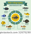 fish, infographic, concept 32670290