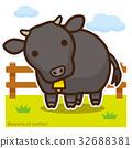 牛のいる牧場 黒毛和牛 32688381