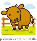牛のいる牧場 褐色和牛 32688382