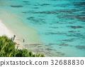 푸른, 파라다이스, 블루 32688830