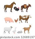 动物 农场 插图 32689197