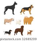 动物 棕色 褐色 32689209