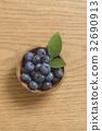 블루 베리 자연 이미지 32690913