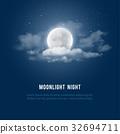 Moonlight night 32694711