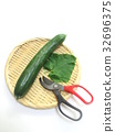 summer, cucumber, cucumbers 32696375