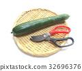 summer, cucumber, cucumbers 32696376