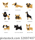 Different dogs breeds characters set of vector 32697407