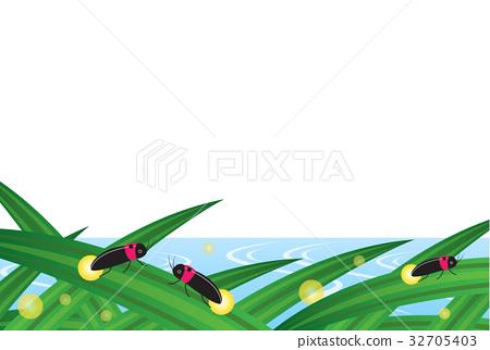 firefly, lightning bug, bug 32705403