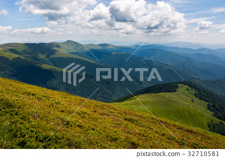 grassy hillside on mountain in summer 32710581