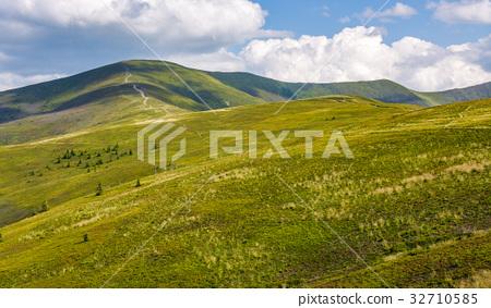 grassy hillside on mountain in summer 32710585