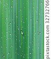 Water drops on green background 32732766