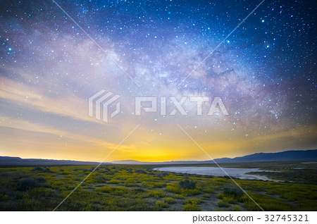 Flower carpet in full bloom and Milky Way Galaxy 1 32745321
