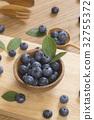 블루 베리 자연 이미지 32755372