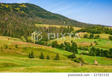 rural fields near forest on hills of Carpathians 32783330