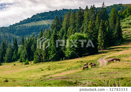 Horses by the road near the forest 32783333