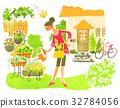 园艺 花园 院子 32784056