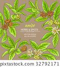 anise, frame, vector 32792171
