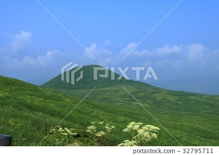夏天的早晨,Yonezuka 32795711